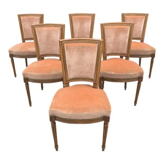 1910s Vintage French Louis XVl Solid Mahogany Dining Chairs - Set of 6 For Sale