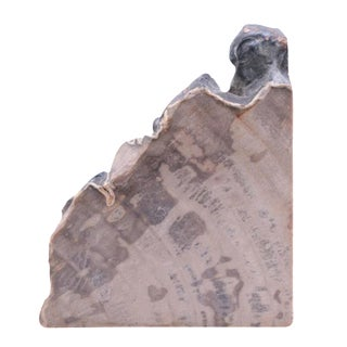 Indonesian Petrified Wood Bookend For Sale
