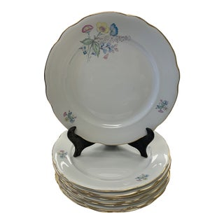 Mid 20th Century Italian Richard Ginori Lunch Plates - Set of 8 For Sale