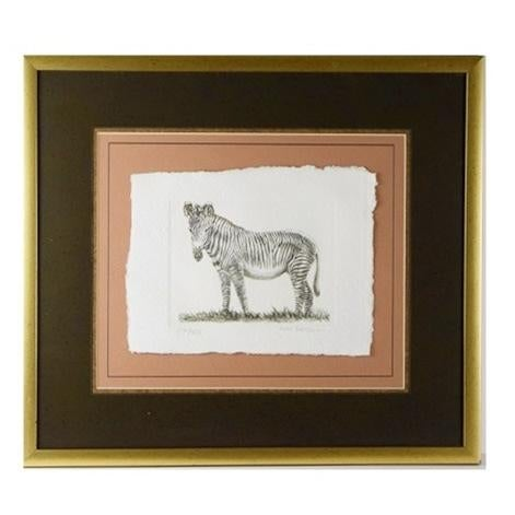 Zebra Hand Colored Engraving by Victor Hohne For Sale