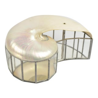 Glass and Mirror Box With Cut Shell Lid