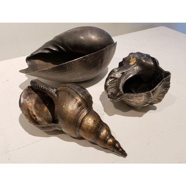 Metal Large Vintage Italian Silvered Bronze Seashells- Set of 3 For Sale - Image 7 of 12