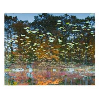 """""""Reflection 17"""" Landscape Photograph For Sale"""