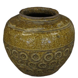 Golden Coins Pottery Planter