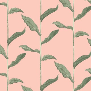 Mitchell Black Home Stalks Coral Prepasted Wallpaper For Sale