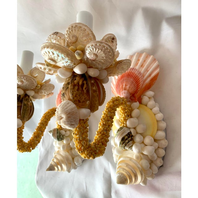 Christa's South Seashells Single-Light Seashell Sconces - a Pair For Sale - Image 4 of 8