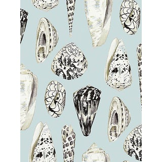 Scalamandre Coquina, Capri Wallpaper For Sale