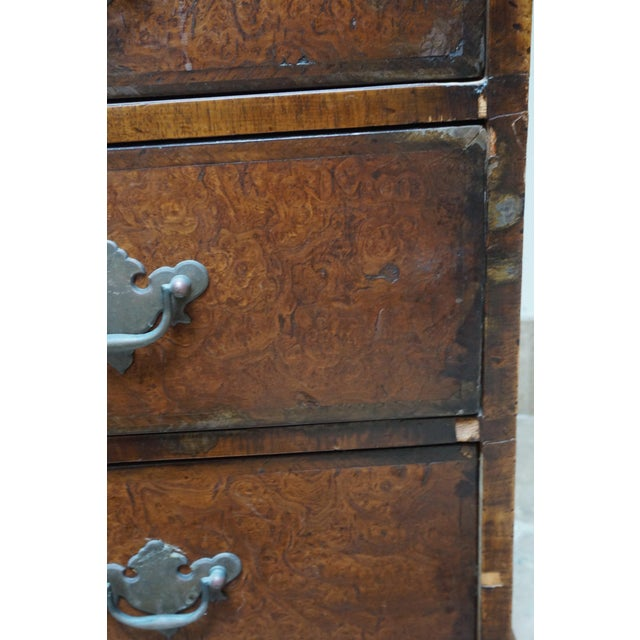 English Small Antique English Burlwood Veneer Chest For Sale - Image 3 of 10