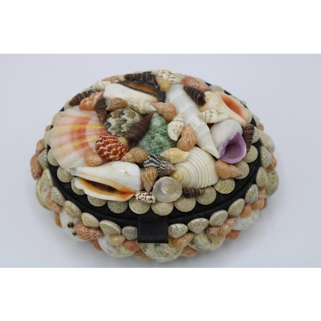Vintage Hinged Seashell Jewelry and Trinket Box. A beautiful vintage jewelry box with all-natural shells that are...