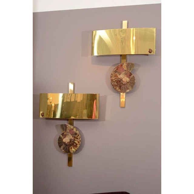 Significant wall appliques featuring large ammonite specimens on heavy brass frame. Exquisite detail of mimi-ammonite on...