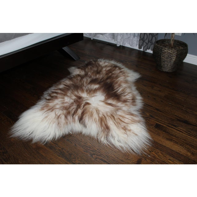 2010s Modern Genuine Icelandic Sheepskin Shade of Brown Rug Throw- 2′ × 3′ For Sale - Image 5 of 9