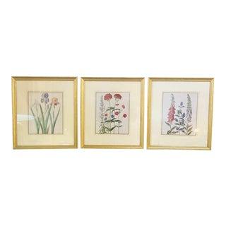 1990s Floral Botanical Framed Prints - Set of 3 For Sale