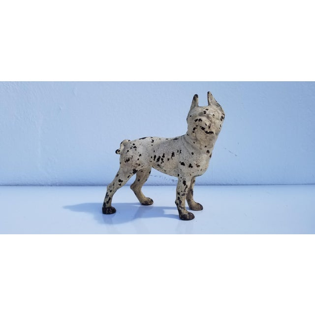 A substantial vintage white cast iron Boston Terrier dog sculpture or doorstop, circa 1930s. in good condition with...