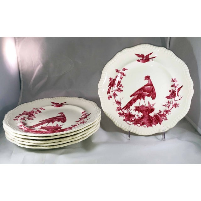 One of the most gorgeous patterns and shape of china I've ever seen! Copeland late Spode Blackbird in Fuchsia are very...
