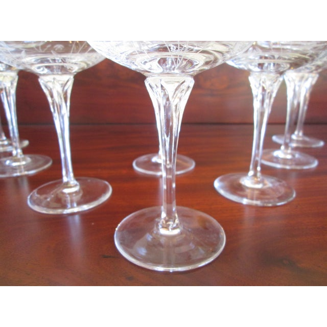 Gorham Gorham Jolie Etched Crystal Cocktail Coupes - S/8 For Sale - Image 4 of 6