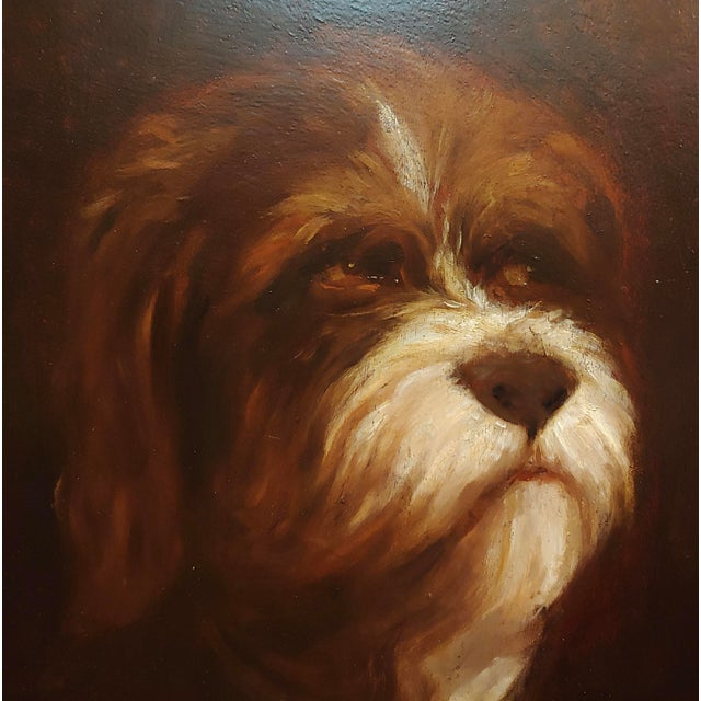 19th Century 19th Century Portrait of a Fluffy Dog - Oil Painting For Sale - Image 5 of 11