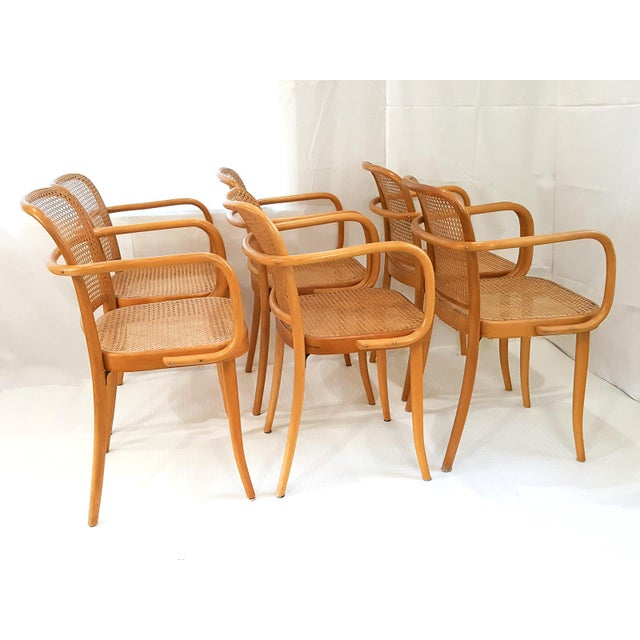 Mid-Century Modern Vintage Stendig Cane Bentwood Dining Chairs- Set of 6 For Sale - Image 3 of 12