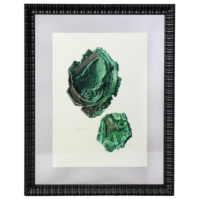 Antique French Gemstone Mineralogy Study Lithographs Prints - Set of 10 For Sale - Image 9 of 13