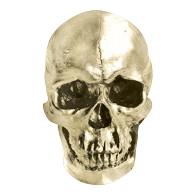 Life Size Faux Human Skull For Sale