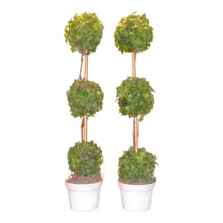 Tiffany and Company Topiary Trees Set in Basket Weave Bone China Pots - A Pair For Sale
