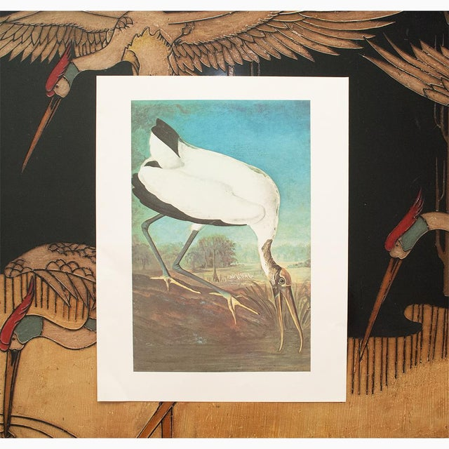 Lithograph 1966 Cottage Lithograph of Large Wood Ibis by John James Audubon For Sale - Image 7 of 10