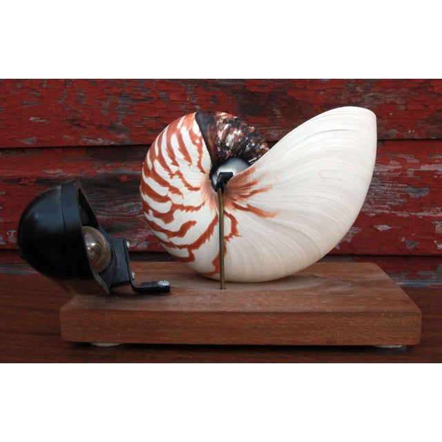 Pink Vintage Nautilus Shell Accent Lamp/Night Light For Sale - Image 8 of 9