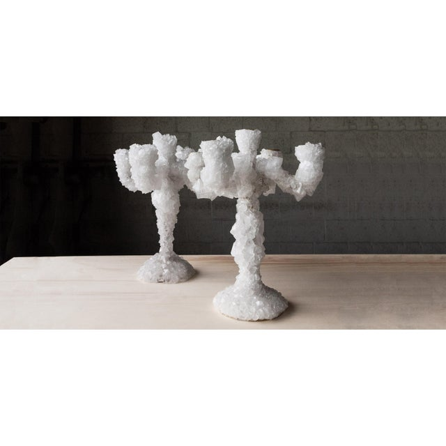 Pair of crystal overgrown candelabras - Mark Sturkenboom Hand sculpted unique design artwork by Mark Sturkenboom...