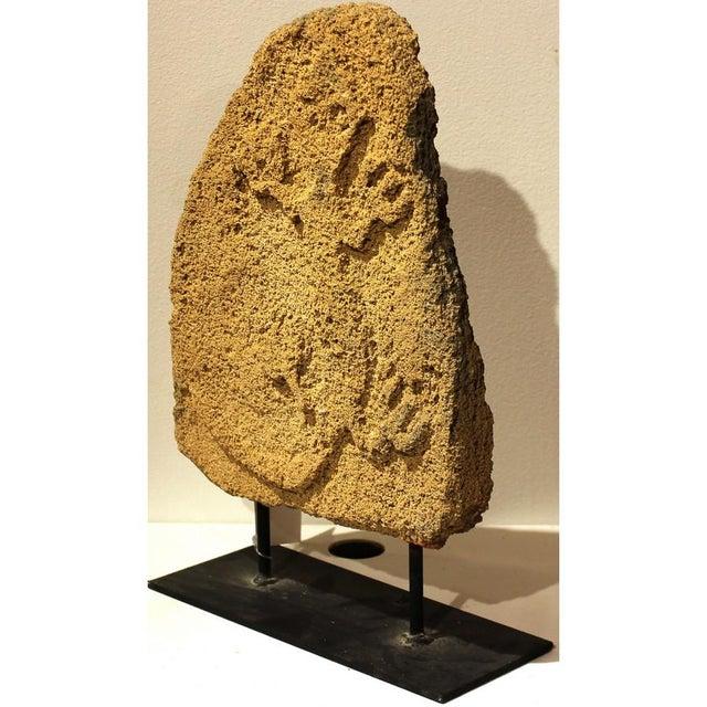 Origin: Indonesia Material: Coral Year: Antique Island of Indonesia: Timor (w) 10″ x (d) 4″ x (h) 15″ (w) 26 x (d) 11 x...