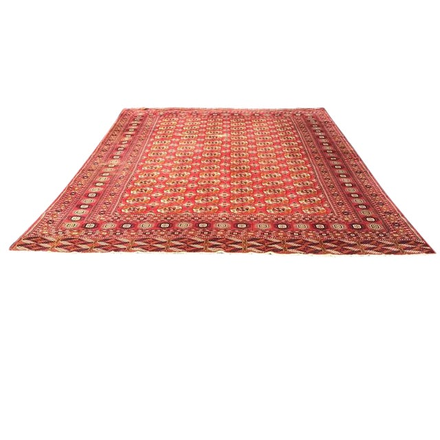 Antique Tribal Turkoman Bohkara Hand Knotted Wool Area Rug - 9′5″ × 12′8″ For Sale