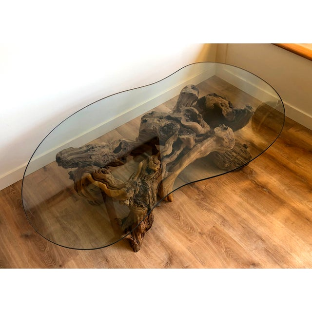 Vintage Burl Wood Root and Tempered Glass Coffee Table. For Sale In Seattle - Image 6 of 10