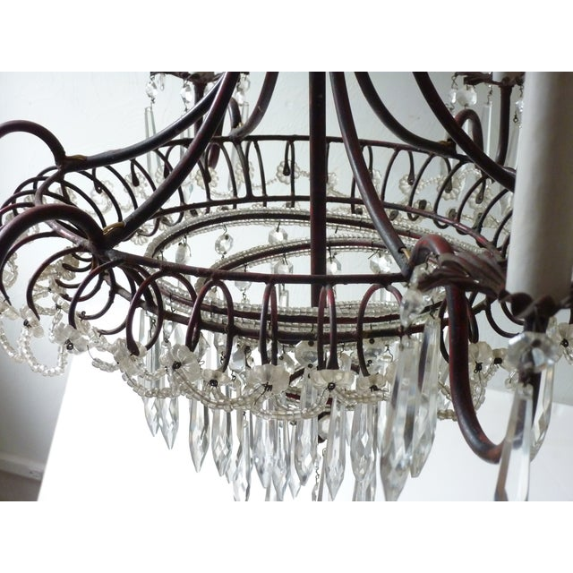 Brown French Tole & Crystal Chandelier For Sale - Image 8 of 11