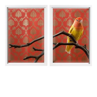 """""""Peach-Faced LoveBird No. 7523"""" Contemporary Photograph by Claire Rosen Diptych, Framed For Sale"""