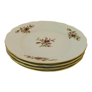 Vintage Rosenthal Classic Rose Collection Sans Souci Ivory Dinner Plates S/4 For Sale