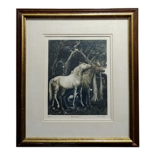 g.h. Rothe - Pair of Horses in Love - Beautiful Color Mezzotint -Pencil Signed For Sale