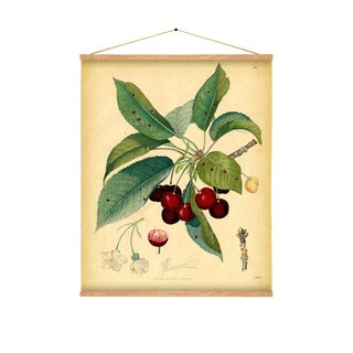 Cherry Wall Hanging