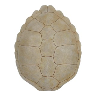 Faux Tortoise Shell Decorative Wall Mount