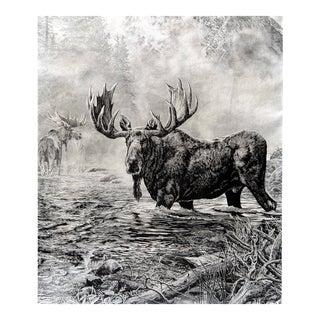Misty Morning Moose Print