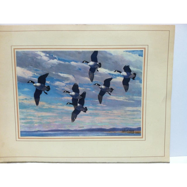 "This is a Mounted Original Print that is titled ""Honkers"" by Richard Bishop."