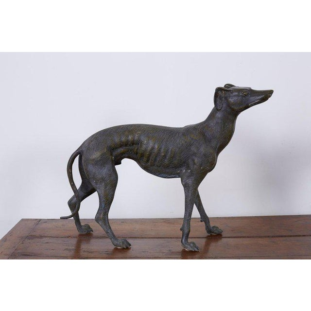 Pair of Bronze Whippets or Greyhound Dog Sculptures For Sale - Image 4 of 13