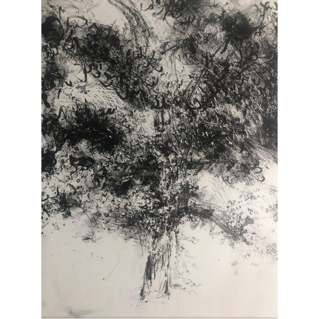 1978 Abstract Tree Lithograph by Dellas Henke For Sale - Image 4 of 6