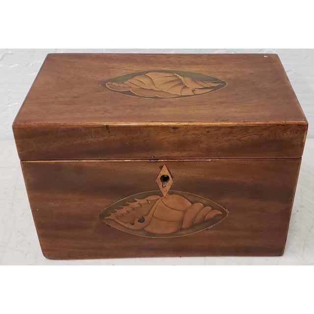 Late 19th Century 19th Century Inlaid Keepsakes Box With Conch Shell Design For Sale - Image 5 of 5