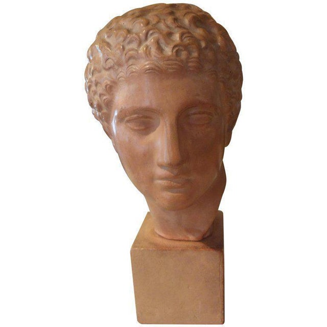 Figurative 1920s Vintage French Classical Male Terra Cotta Bust Sculpture For Sale - Image 3 of 8