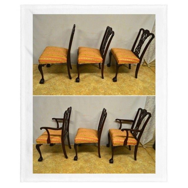 Solid Mahogany Chippendale Style Dining Chairs Ball & Claw Feet - Set of 6 For Sale - Image 9 of 11