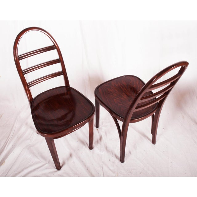 Beech bentwood chair made in 1919 by Thonet. The chair is walnut stained with shellac finish. This listing is for a single...