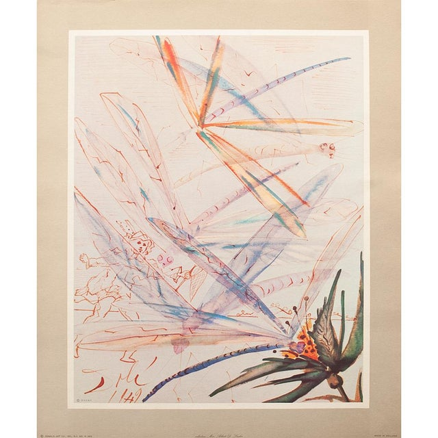 XL 1954 Dali, Dragonflies Original Period Lithograph From From the Mrs. Albert D. Lasker Collection For Sale - Image 12 of 13