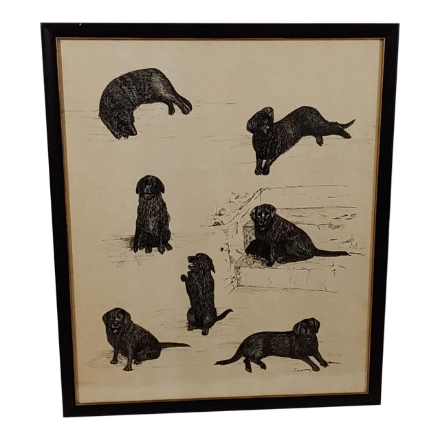 Late 20th Century Black Lab Vignettes Framed Dog Sketches Under Glass For Sale