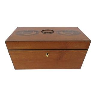 Early 19th Century English Satinwood Tea Caddy Oval Cornucopia Inlays For Sale