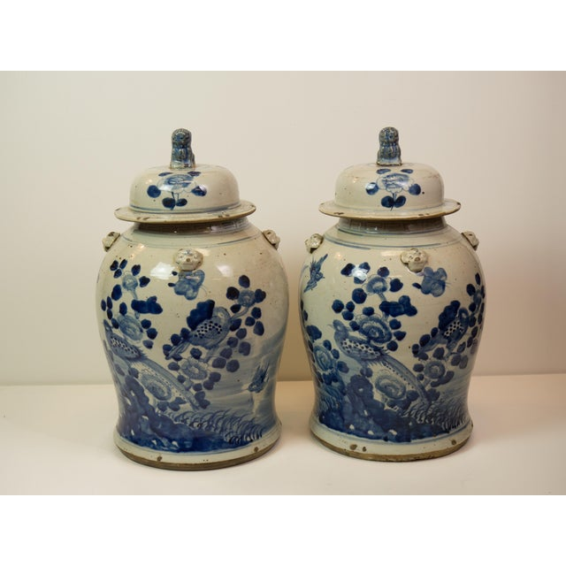 Antique Blue & White Ginger Jars - A Pair - Image 2 of 9