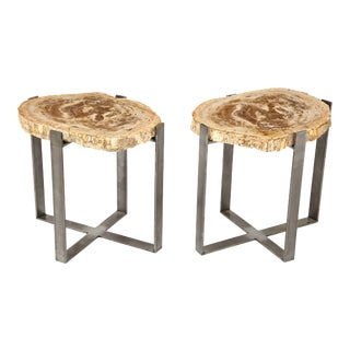 Petrified Wood Side Tables - a Pair For Sale