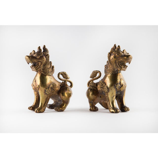 Brass Solid Brass Thai Foo Dogs For Sale - Image 8 of 9